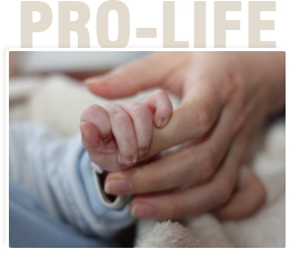 3,700 Die From Abortion Daily, Save as Many as You Can